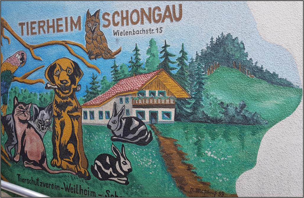 Hohe Investitionen im Tierheim Weilheim Schongau