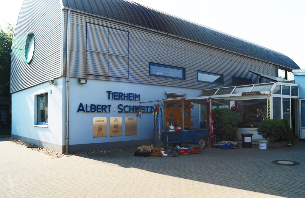 Besuch im Tierheim Bonn